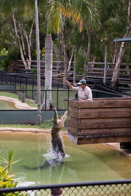 20081225_Australia_1780